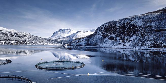orn_software_aquaculture_655x327